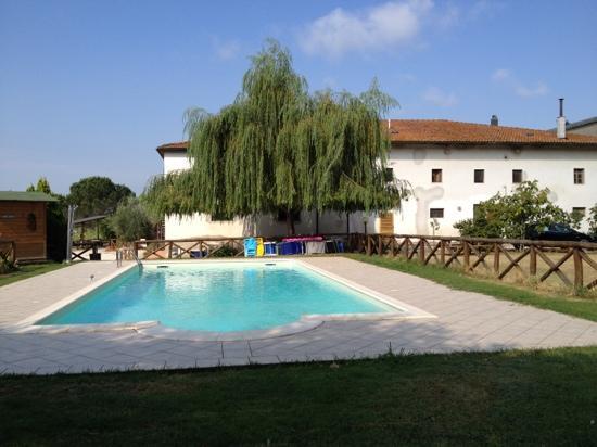 Agriturismo Le Baccane: fab pool!!
