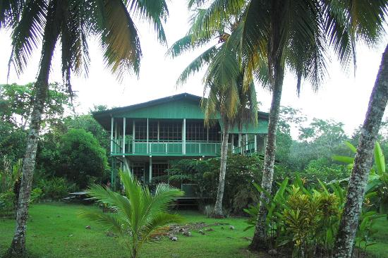 Tesoro Verde Lodge & Hostel照片