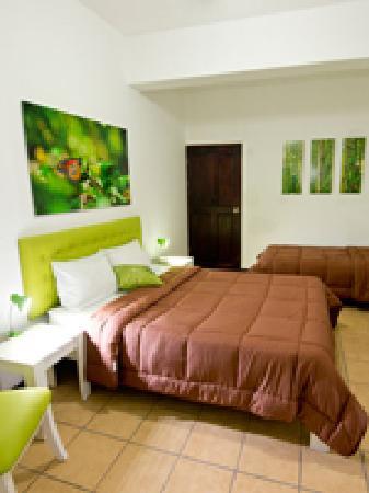 Hotel Cocoon: Triple Room