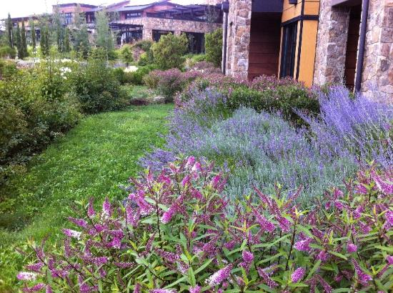 Allison Inn & Spa : Garden View From Private Patio