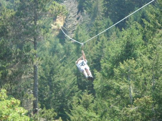 Adrena LINE Zipline Adventure Tours: PLank