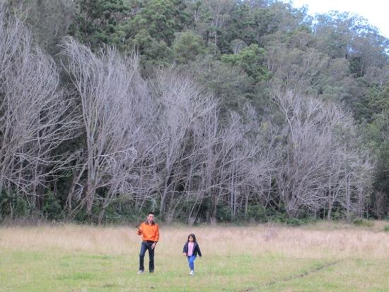 Cedar Glen Farmstay: boomerang lesson
