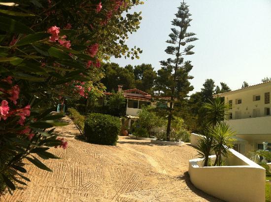 Skiathos Driades: Villa Driades
