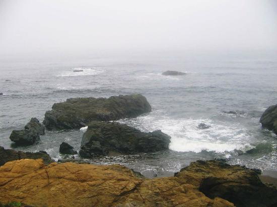 Fiscalini Ranch Preserve: The rocky coast