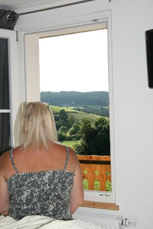 Krone Langenschiltach : Lovely view!