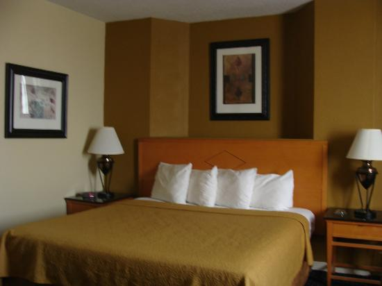 Days Inn Lebanon Valley: Business king newly renovated room
