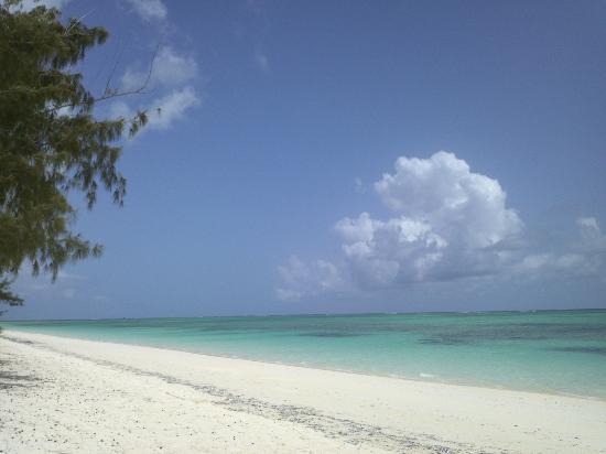 Pelican Beach Hotel: Pelican Beach-1
