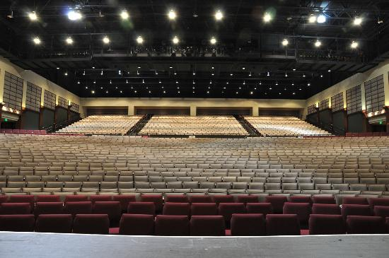 Charleston Area Convention Center : Performing Arts Center, view from stage