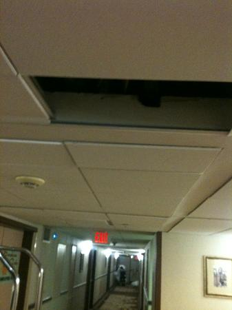 Wyndham Garden Philadelphia Airport: Hole in ceiling. Whole stay