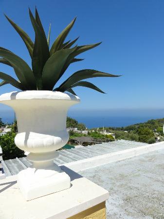 Villa Mimosa Bed & Breakfast Resort: particolare del terrazzino