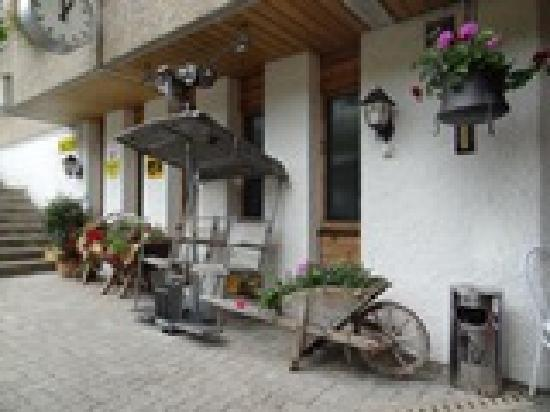 Alpenhotel Residence: Hotel Eingang