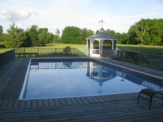 Rosebarb Farm: Pool