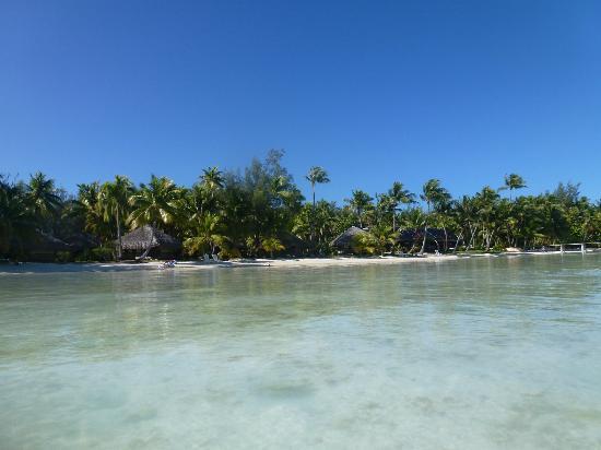 Eden Beach Hotel Bora Bora: Eden Beach Bora Bora - July 2012