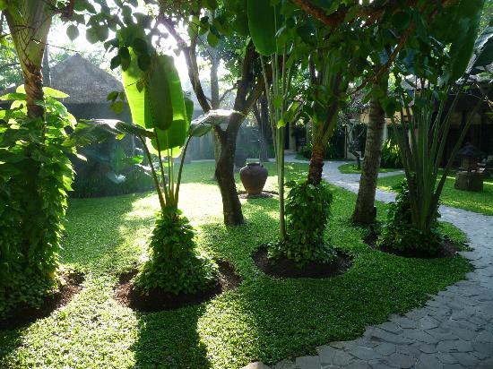 Kayumanis Sanur Private Villa & Spa : Garden