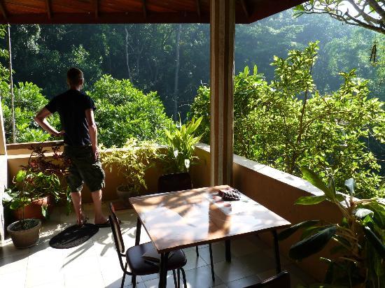 Green Woods Guest House : Uitzicht vanaf gezamenlijk terras
