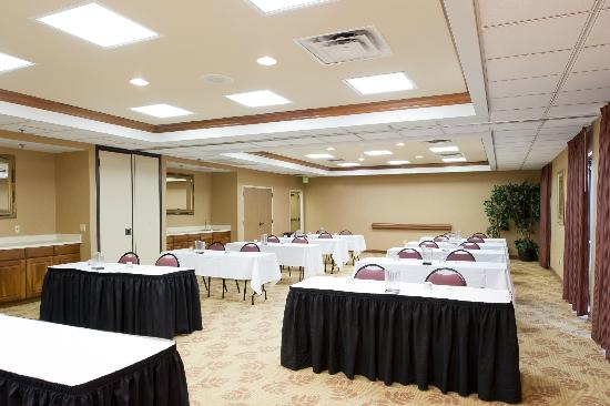 Hampton Inn and Suites-Chesterfield: Meeting Room