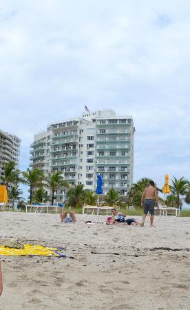 Sea View Hotel: desde la playa