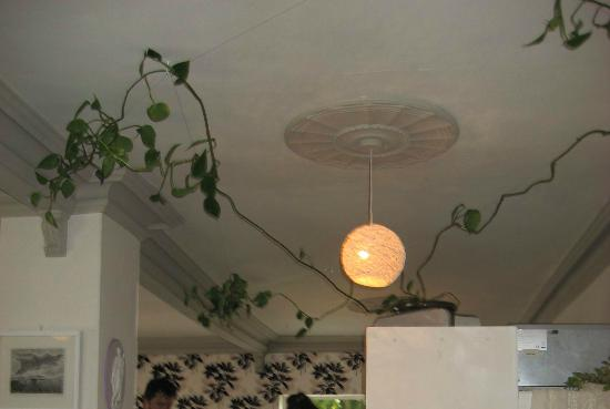 Great Idea For Decorating A Restaurant Ceiling Picture Of