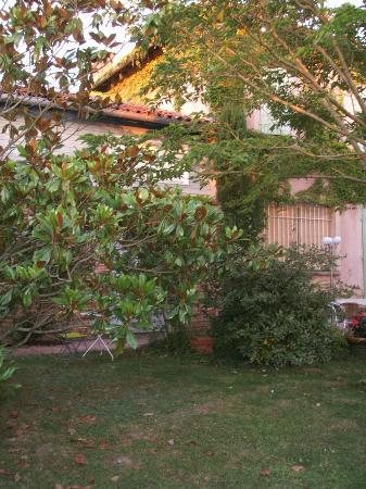 Auberge Les Palmiers: Garden Area
