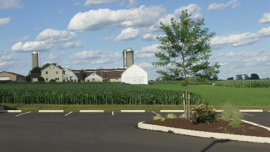 Olde Amish Inn: Great view from east side of building.