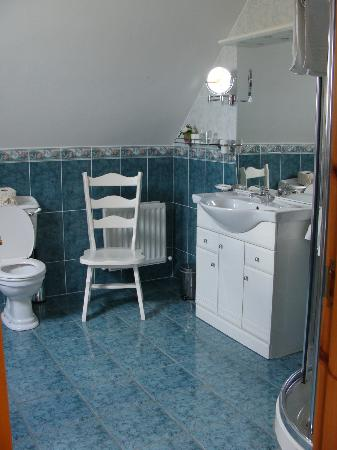 The Tides B&B: Large, clean, one of the only bathtubs we had in Ireland