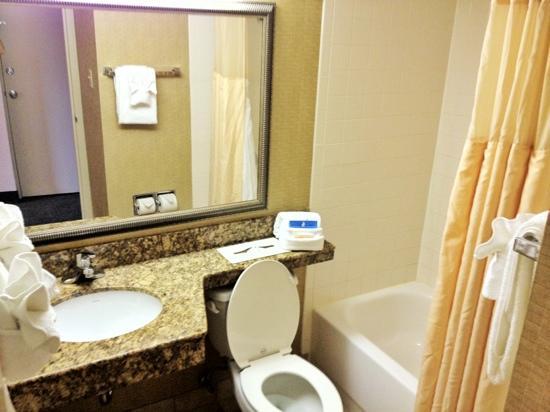 Holiday Inn Charlottesville - University Area: bathroom