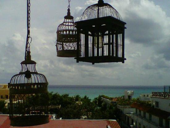 Hotel El Punto: La Azotea Rooftop view