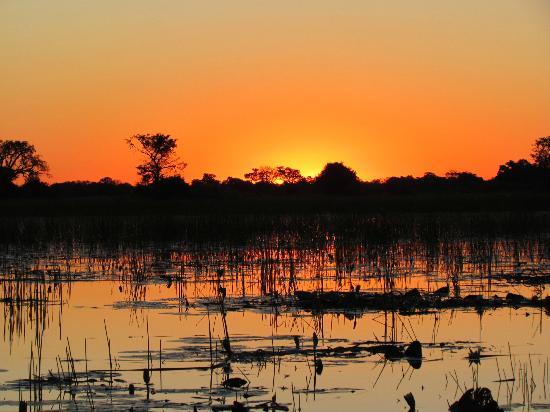 andBeyond Xaranna Okavango Delta Camp: Xaranna Sunset