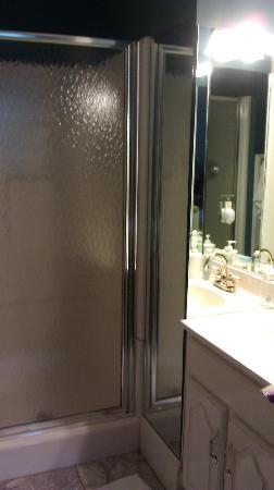 The Willard Street Inn: Rose Room bathroom 