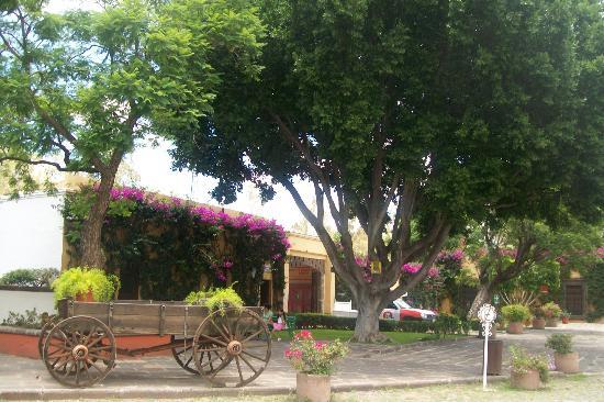 Fiesta Americana Hacienda Galindo: HERMOSOS JARDINES