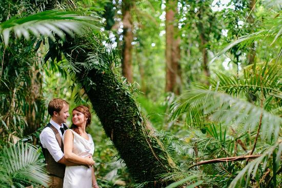 Bellenden Ker, Australia: Rainforest Romance
