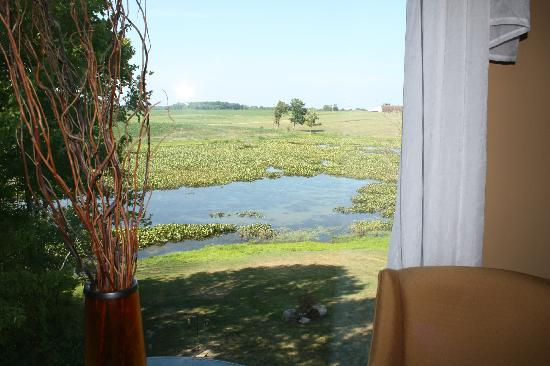 Castle in the Country Bed & Breakfast Inn: Window overlooks pond, fields and barn