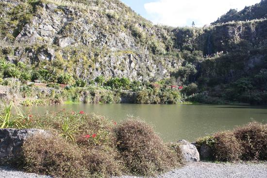 Whangarei Quarry Gardens: Waterfall in the background