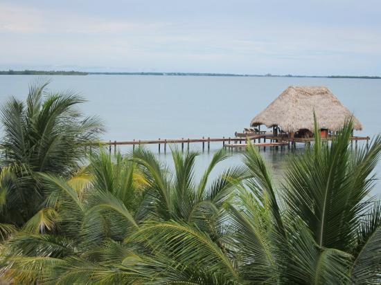 Robert's Grove Beach Resort: view from balcony