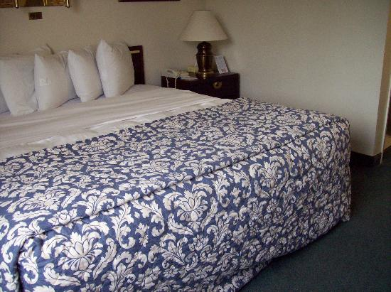 Americas Best Value Inn - Madison: single king room