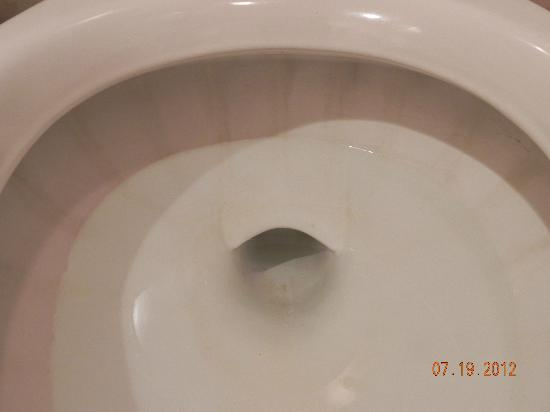 Scotlaur Inn Bed and Breakfast: lovely stains in the toilet