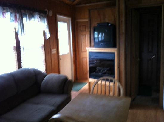 Ponderosa Pines Campgrounds: electric fire place