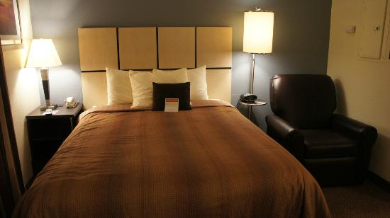 Candlewood Suites Minneapolis - Richfield: The comfortable bed