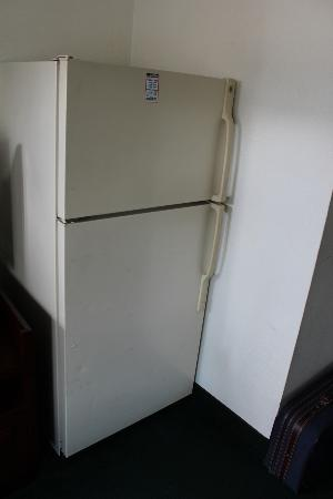Palms Motel: Full size fridge, had ice tray in it with who knows what in tray