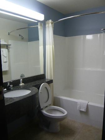 Microtel Inn & Suites by Wyndham Klamath Falls: Bathroom