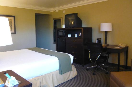 BEST WESTERN PLUS Wine Country Inn & Suites: King bedroom