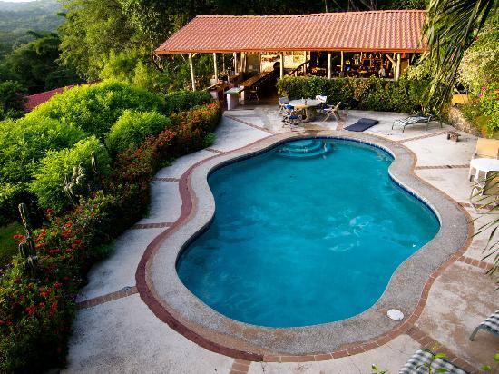 Rancho Armadillo Estate: Pool, kitchen and open air dining area.