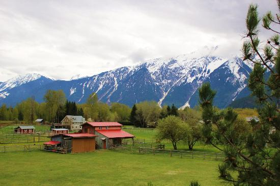 Pemberton Valley Inn: Room view