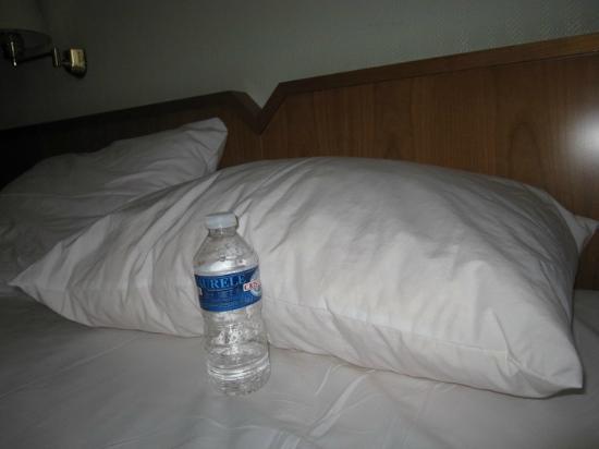 Hotel Carlton : Thick pillow