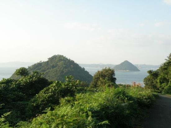 Cape Osaki-no-Hana: 大槌島、小槌島の眺め