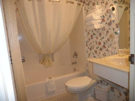 Super 8 by Wyndham Canandaigua: Bathroom