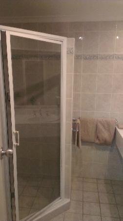 Endeavour Court Motor Inn : The Shower