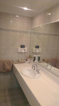 Endeavour Court Motor Inn : The Bathroom