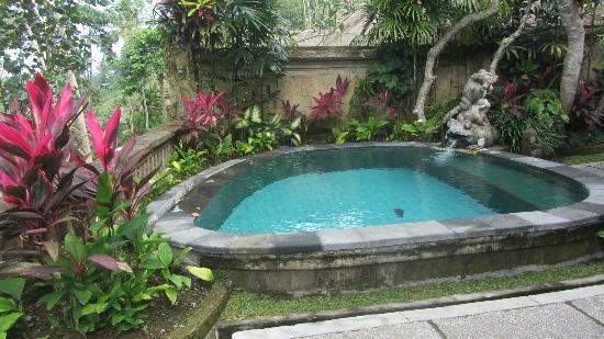 Pita Maha Resort and Spa: Our own PRIVATE pool in our villa. Not big enough for laps but big enough to cool off.