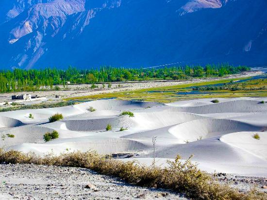 Leh District, Indien: Sand Dunes of Nubra Valley